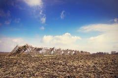 Hay field Stock Image