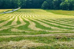 Hay Field Patterns images stock