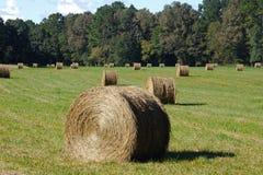 Hay Field With Round Bales Arkivbild