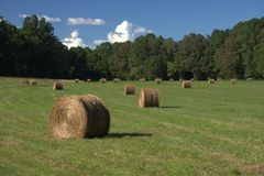 Hay Field With Round Bales arkivfoton