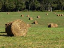 Hay Field With Round Bales Arkivbilder
