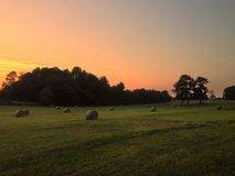 Hay Field at Sunset. Freshly baled southern hay field at at the end of the day royalty free stock image