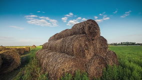 Hay in a field at sunset stock video
