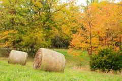 Hay Field under nedgången Fotografering för Bildbyråer