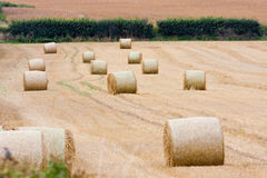 Hay Field View with Large Round Bales Royalty Free Stock Photos