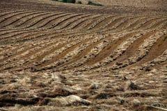 Hay Fields et Rolling Hills photo libre de droits
