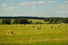 Hay in the fields. Haymaking on the green fields of Tatarstan on a clear summer day royalty free stock image