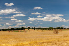 Hay fields in Normandy. Sunny hay fields in Normandy, France royalty free stock image