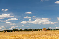 Hay fields in Normandy. Sunny hay fields in Normandy, France royalty free stock photos