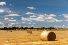 Hay fields in Normandy. Sunny hay fields in Normandy, France royalty free stock images