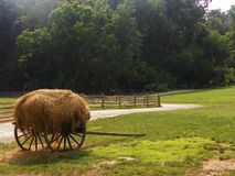 Hay filled wagon. Wagon filled with hay on a farm Royalty Free Stock Images