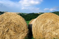 Hay in Forl' Italy Stock Image