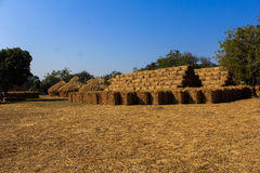 The hay Stock Photos
