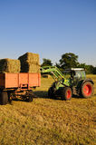 Hay harvest. Tractor and trailer at the hay harvest Stock Image