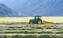 Hay harvest Stock Image