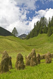 Hay harvest in South Tyrol Stock Photos