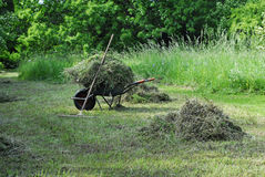 Hay harvest in summer Stock Photo