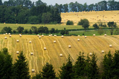 Hay harvest in summer. In the highlands Stock Photos