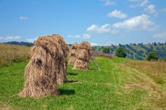Hay harvest  in the tatra mountain Royalty Free Stock Images