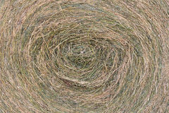 Hay Harvest. The harvest of hay to get to the milk production Royalty Free Stock Images