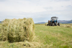 Hay harvesting Stock Photography