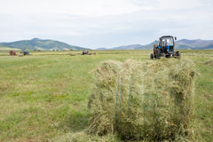 Hay harvesting Royalty Free Stock Photography