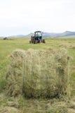 Hay harvesting Stock Photo