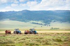 Hay harvesting Stock Image