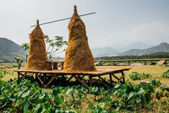 Free Hay, Haystack, Agriculture, Cart. Rural Landscape, Farm Village. Beautiful Asian Landscape Royalty Free Stock Images - 182950989