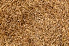 Hay in a haystack Royalty Free Stock Photo