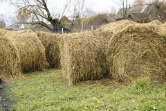 A haystack on a stretch in the old village Stock Image
