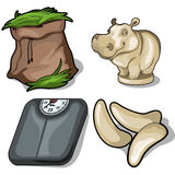 Hay, hippo, scale and fang. Animals diet concept Stock Photos