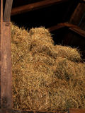 Hay in the loft Royalty Free Stock Photography