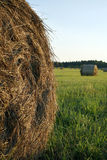 Hay making Royalty Free Stock Images