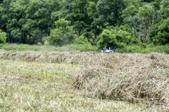 Hay Making con il trattore nel fondo Fotografie Stock Libere da Diritti