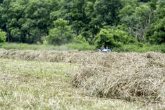 Hay Making with tractor in background Royalty Free Stock Photos