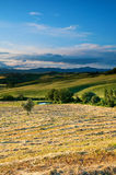Hay Making in Tuscany, Italy Stock Photo