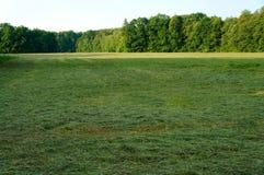 Hay Meadow Arkivfoton