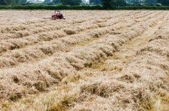 Hay Meadow Stock Image