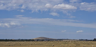 Hay meadow under hill near Dubbo, New South Wales, Australia. Royalty Free Stock Images