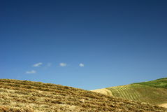 Hay meadows in countryside. Scenic view of hay fields or meadows on countryside hillside with blue sky background and copy space royalty free stock images