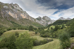 Hay meadows in Valle del Lago. One of fifteen parishes in Somiedo, a municipality located in the central area of the Cantabrian Mountains, Principality of Royalty Free Stock Image