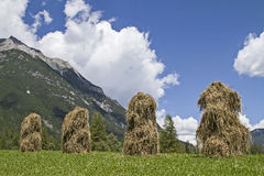 Hay men in Tyrol Royalty Free Stock Photography