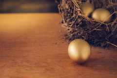 A Hay Nest with 3 golden Eggs. Stock Image