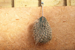 A hay net feeder in a stable. Royalty Free Stock Photo