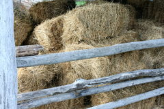 Hay in the old barn Royalty Free Stock Photo