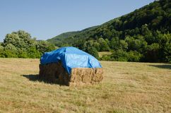 Hay  packing on mountain field. Agricultural hay  packing on mountain field in Serbia Stock Image