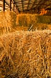 Hay pile Stock Photo