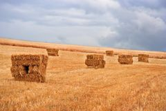 Hay pile Royalty Free Stock Photos