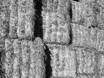 Hay pile in barn Stock Image
